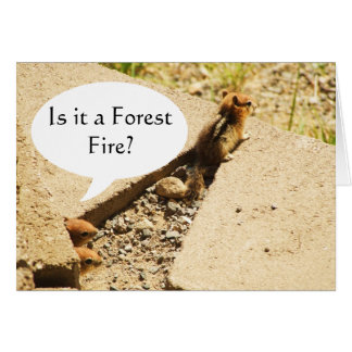 Is it a Forest Fire? Greeting Card