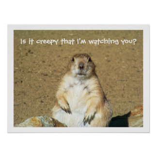 """Is it creepy that I'm watching you?"" Prairie Dog Poster"
