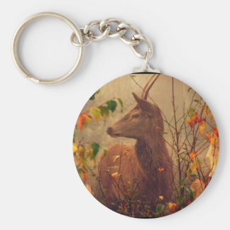 Is tickled pink O my Hind (François Ville) Basic Round Button Key Ring