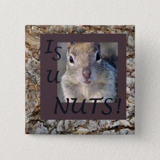 IS U NUTS! 15 CM SQUARE BADGE