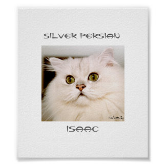 Isaac, An Extraordinary Silver Persian Poster
