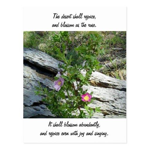 Isaiah 35:1-2 postcard