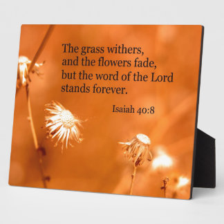 Isaiah 40:8 The grass withers and the flowers fade Photo Plaques