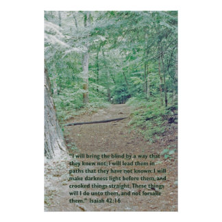 Isaiah 42:16 Wilderness path Poster