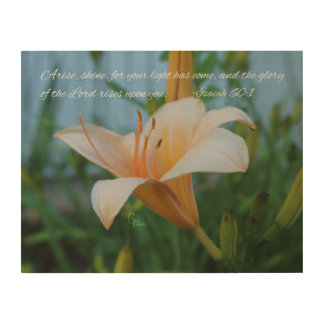 Isaiah 60:1 Peach Lily Wood Wall Art