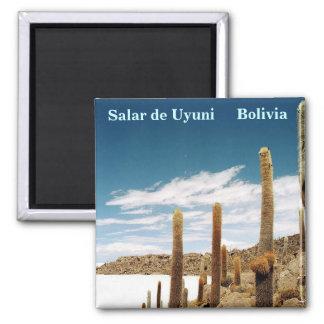 Isla del Pescado, Salar de Uyuni, Bolivia Magnet