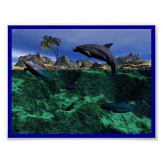 Island Dolphins Poster