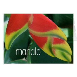 Island Mahalo Thank you Cards
