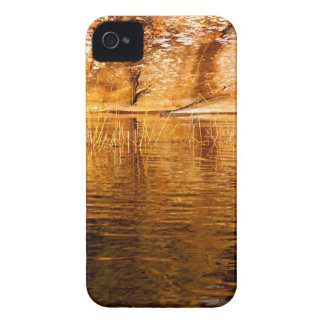 Island Reflections iPhone 4 Cases