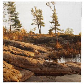 Island rocky shoreline napkin