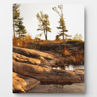 Island rocky shoreline plaque