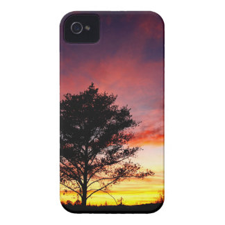 Island Sunset iPhone 4 Case-Mate Cases