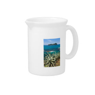 Islet and coastal vegetation pitcher