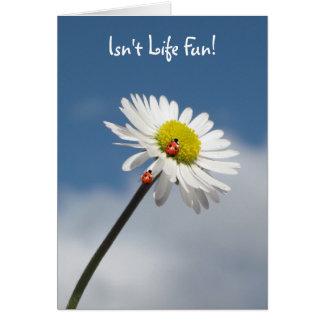Isn't Life Fun Greeting Card