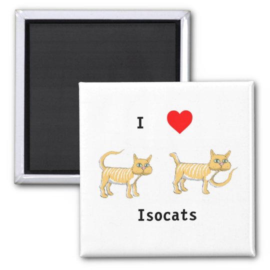 Isocats button magnet