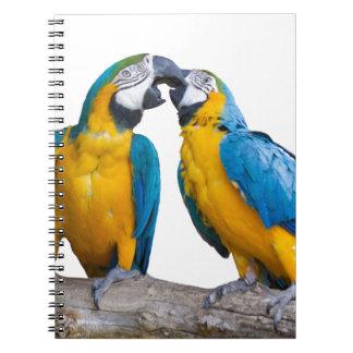 isolated ara ararauna parrot notebooks