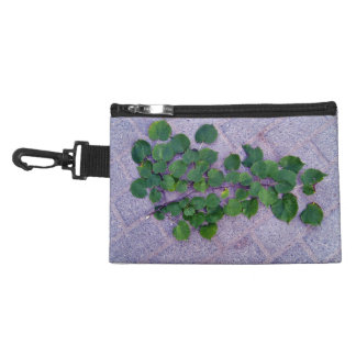 Isolated green branch with leaves on a concrete fl accessories bag