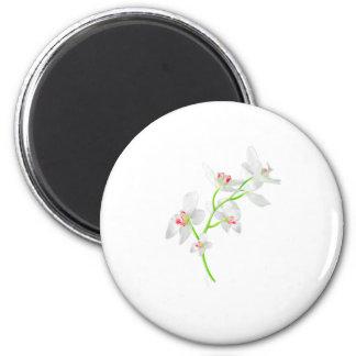 Isolated Orquideas Blossom 6 Cm Round Magnet