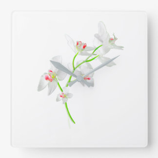 Isolated Orquideas Blossom Square Wall Clock