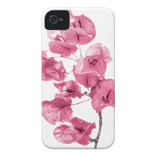 Isolated Santa Rita Flower iPhone 4 Case-Mate Cases