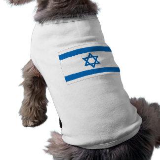 Israel Flag Shirt