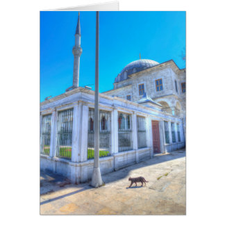 Istanbul Mosque Cat Card