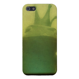 It Ain't Easy Being Green Case For iPhone 5