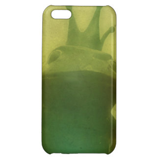 It Ain't Easy Being Green iPhone 5C Cases