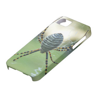it founds of cellular ray spider barely there iPhone 5 case