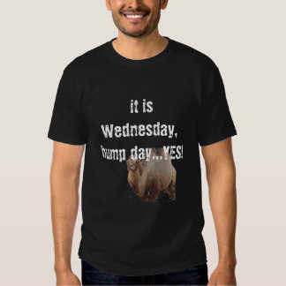 it is Wednesday, hump day...YES! Tshirts
