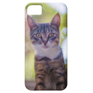 It marries an artistic photo of a cat iPhone 5 cover