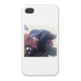 It marries for Iphone Dogs iPhone 4 Case