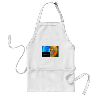 IT SEES AWARE OF THIS STANDARD APRON