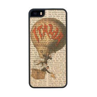 Italia Hot Air Balloon Wood iPhone SE/5/5s Case