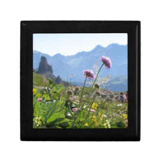 Italian Dolomites landscape . Family on background Gift Box