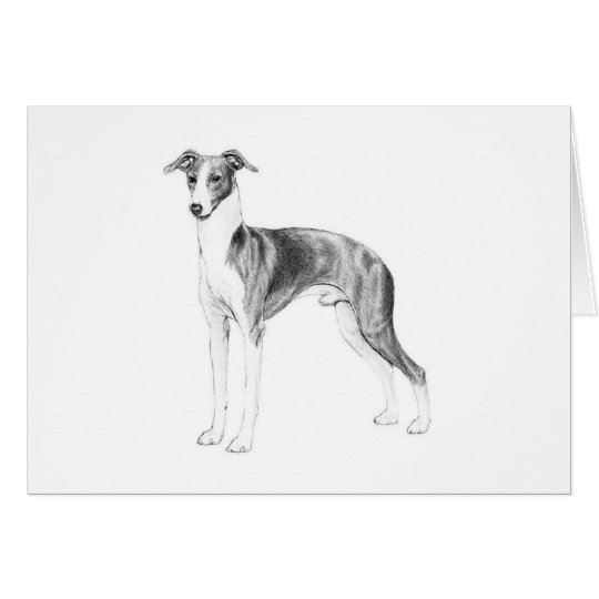 Italian Greyhound Style Card