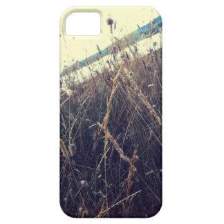 Italian landscape iPhone 5 cases