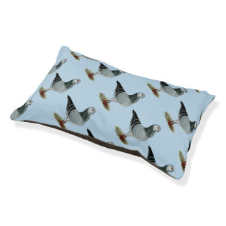 Italian Owl Grizzle Pigeon Pet Bed