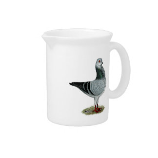 Italian Owl Grizzle Pigeon Pitcher