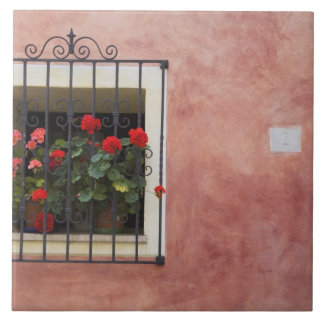 Italy, Asciano, Window Boxes with Fresh Spring Large Square Tile