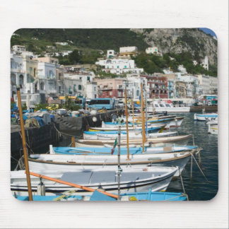 ITALY, Campania, (Bay of Naples), CAPRI: Marina Mouse Pad