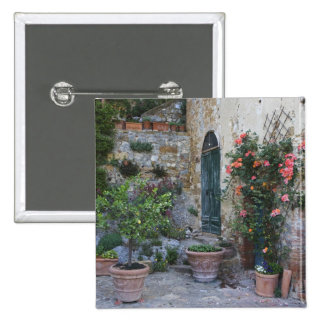 Italy Petroio Potted plants decorate a patio Pinback Button