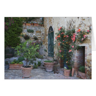Italy, Petroio. Potted plants decorate a patio Card