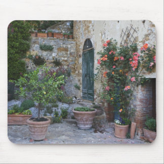 Italy, Petroio. Potted plants decorate a patio Mouse Pad