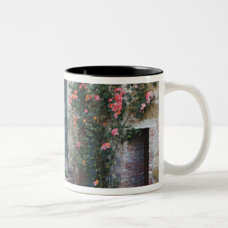 Italy, Petroio. Potted plants decorate a patio Mug