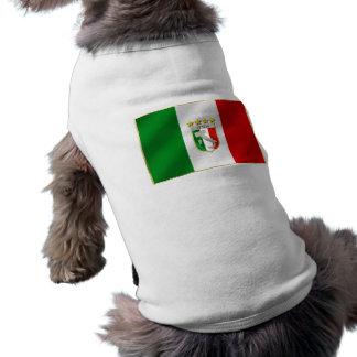 Italy Soccer T-shirts and gifts ideas