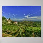 Italy, Tuscany, Greve. The vineyards of Castello Print