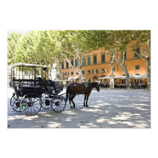 Italy, Tuscany, Lucca, Barouche on the Piazza Photo Art