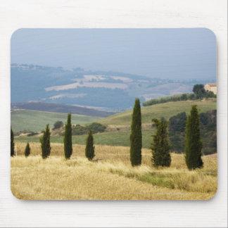 Italy. Tuscany. Pienza. Mouse Pad