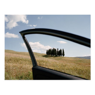 Italy,Tuscany,Val d'Orcia,Cypress trees in the Postcard
